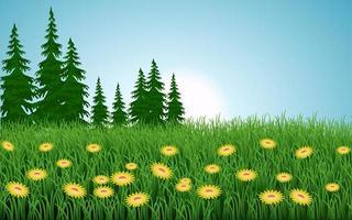 gelbe Blumen in hügeliger Wiesenlandschaft
