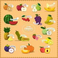 uppsättning av frukter och namn vektor