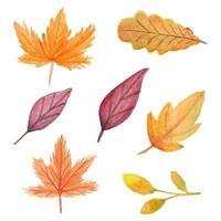 handgemaltes Herbstblatt-Aquarell-Set