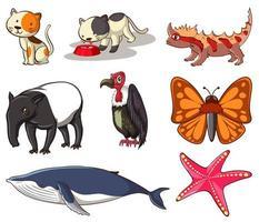 stor uppsättning djurliv med många typer av djur vektor