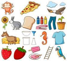 stor uppsättning olika livsmedel och andra föremål på vitt