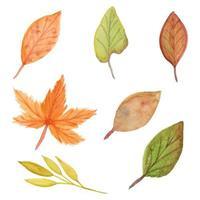 samling av höstens akvarellblad vektor