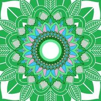 mandala mönster på vit, grön bakgrund vektor