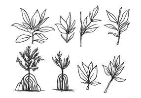 Fri handdragen Mangrove Vector