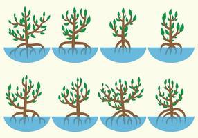Mangrove-Vektor