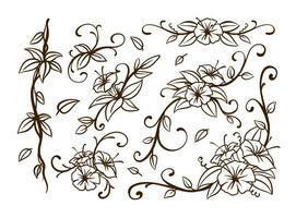 Liana virvla runt blomma vektor