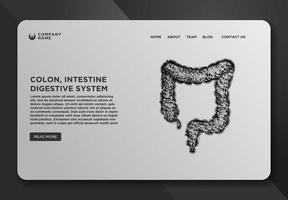 webbsidemall av kolon, tarm, matsmältningssystem vektor