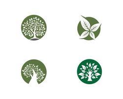 uppsättning ekologiska logotypbilder vektor