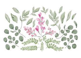 samling av blad och blommor i akvarell