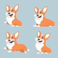corgi hund i olika poser