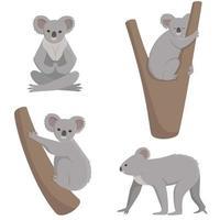 koala i olika poser vektor