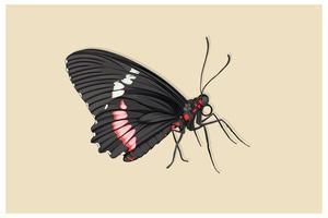 svart vacker fjäril realistisk stil handritning vektor