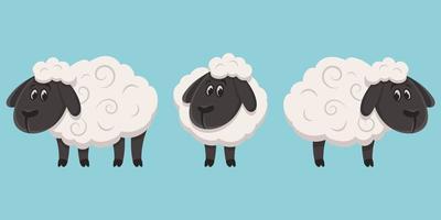 Schafe in verschiedenen Posen