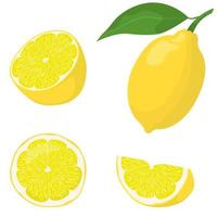 ganzes und geschnittenes Zitronenset vektor