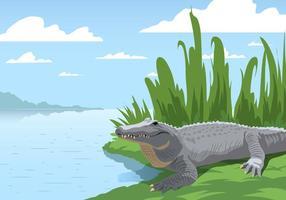 Gator am Sumpf vektor