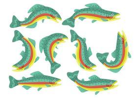 Rainbow Trout Ikoner vektor