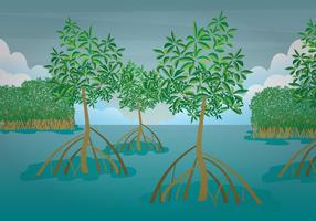 Kostenlose Mangrove Illustration vektor