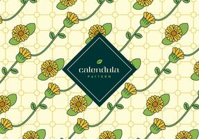 Calendula Hintergrund vektor