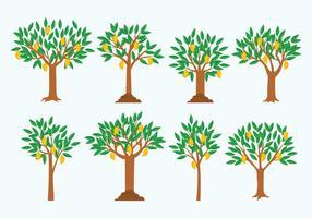 Freier Mango Baum Vektor