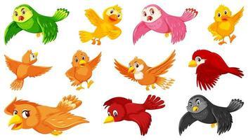 Satz von Vogelzeichentrickfiguren vektor