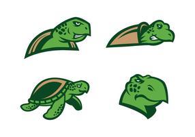 Freier Schildkrötenvektor