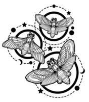 Tattoo Kunst Schmetterling vektor