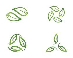 uppsättning blad bilder logotyp vektor