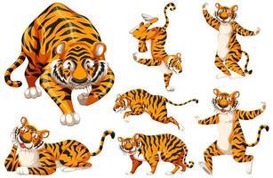 tiger teckenuppsättning