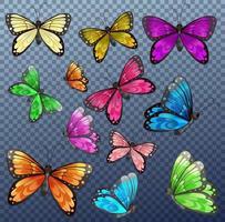 Satz von verschiedenen bunten Schmetterlingen