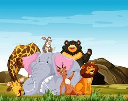 Wildtiergruppe posiert