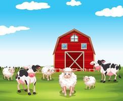 Schafe und Kühe auf dem Bauernhof vektor