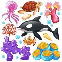 uppsättning havsdjur på vit bakgrund vektor