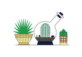 Gratis Succulents Vector
