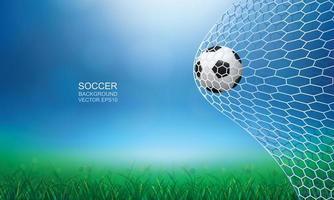 fotboll eller fotboll i nät med utomhusplats vektor
