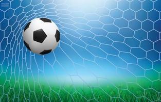 fotboll eller fotboll landar i mål vektor