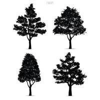 träd silhuetter isolerad på vitt vektor