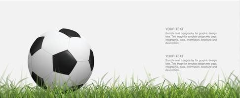 Fußball oder Fußball auf grüner Wiese vektor