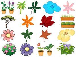 uppsättning av olika växter på vit bakgrund