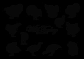 Wildtürkei Silhouetten