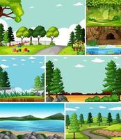 vier verschiedene Szenen in der Natur