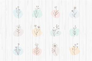 botanische Pflanzen mit Highlights gesetzt vektor