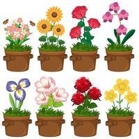 vackra blommor i trädgården vektor