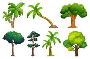 uppsättning växter och träd vektor