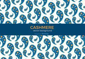 Bunte Cashmere-Vektor Hintergrund vektor