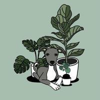 handritade husväxter och söt hund