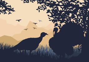 Paare Der Wild Turkey Suchen Sie nach etwas zu essen vektor