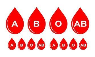 Blutgruppe komplett mit rh