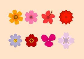 Free Flower Vektor-Sammlung