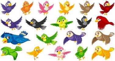 Satz von Vogelzeichentrickfiguren
