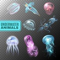 Unterwasser transparentes Set vektor